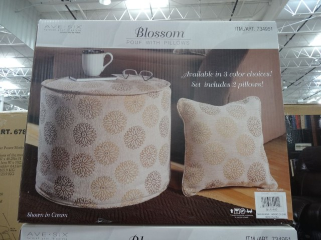 Ave Six Blossom Pouf Costco