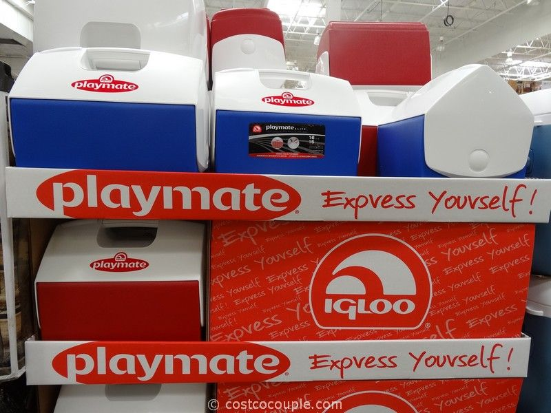 Igloo Playmate Elite Cooler Costco