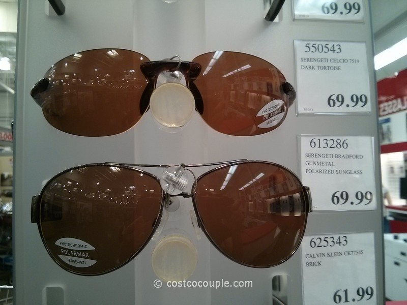 Serengeti Sunglasses Costco  serengeti sunglasses