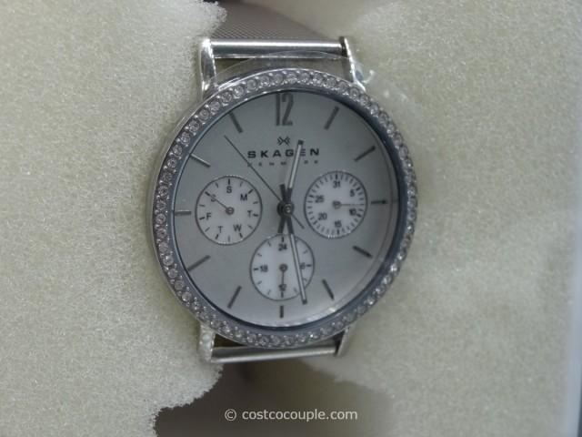 Skagen Ladies Mesh Silver Dial Watch Costco 2