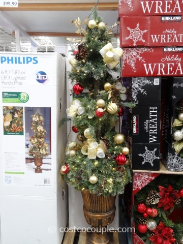 Philips 60-Inch Spiral Topiary Costco 6