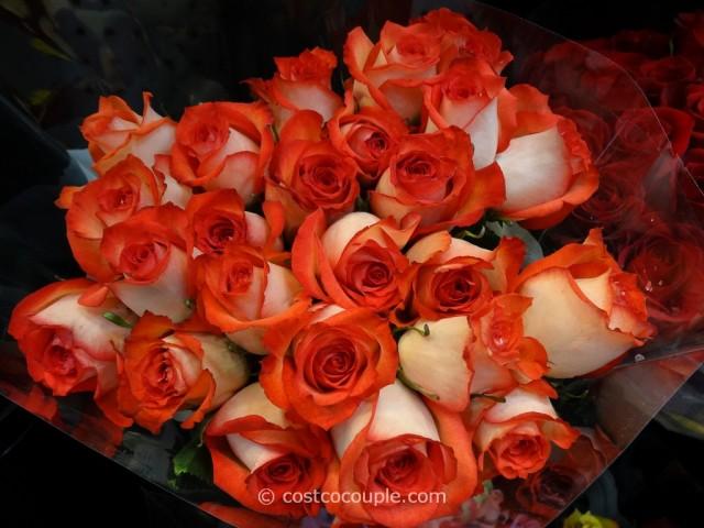 Rainforest Alliance Certified 2 Dozen Premium Roses Costco 3