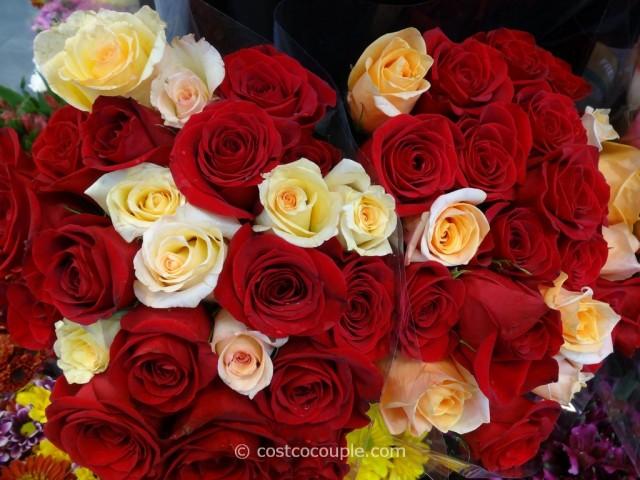 Rainforest Alliance Certified 2 Dozen Premium Roses Costco 6