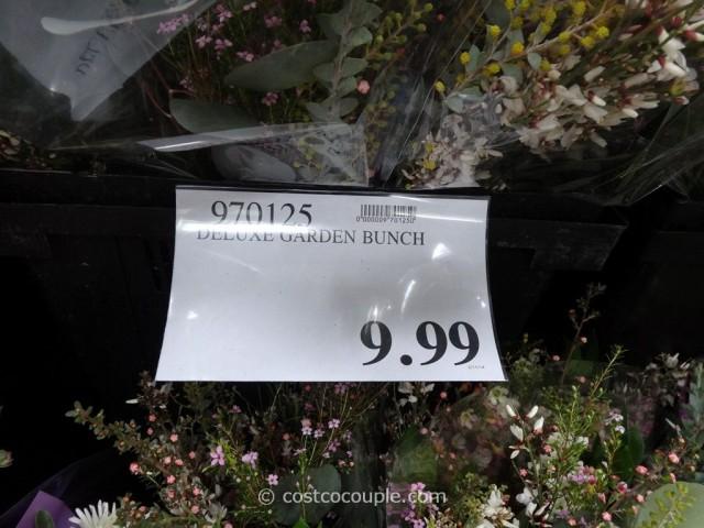 Deluxe Garden Bunch Costco 1