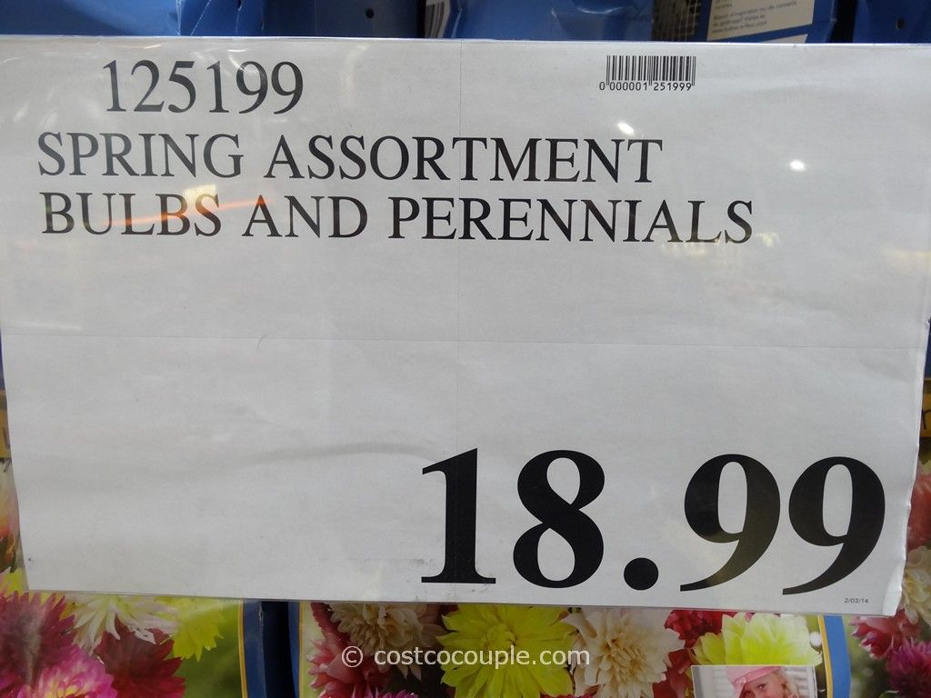 Spring Assortment Bulbs And Perennials