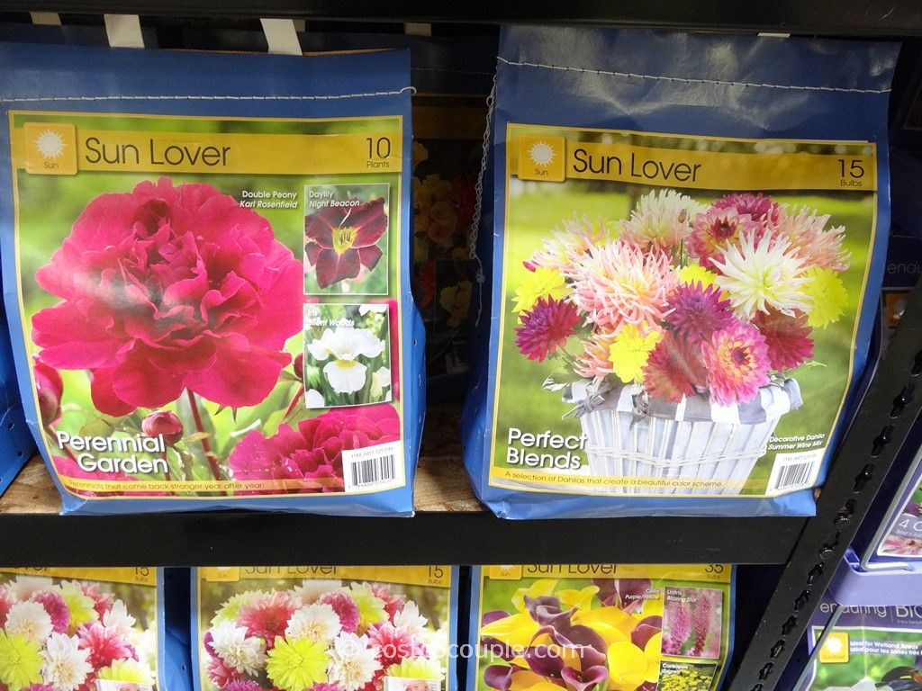 Spring Assortment Bulbs and Perennials Costco 2