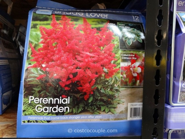 Spring Assortment Bulbs and Perennials Costco 3