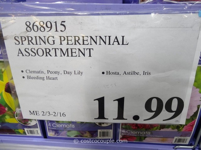 Spring Perennial Assortment Bulbs Costco 2