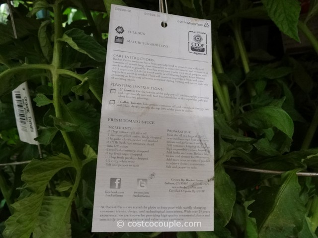 Rocket Farms Organic Heirloom Tomatoes Costco 4