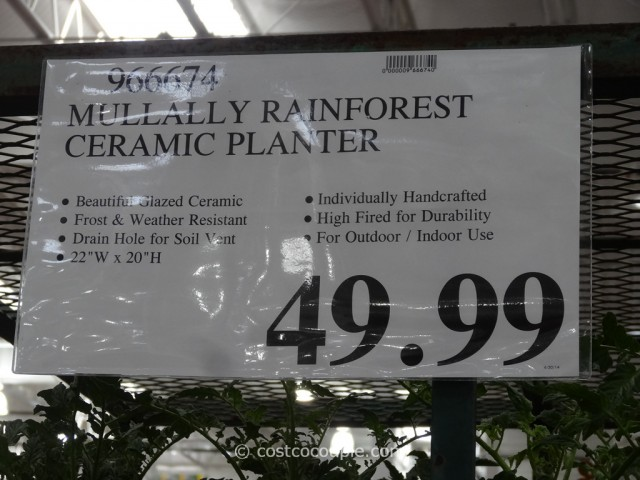 Mullally Rainforest Ceramic Planter Costco 1