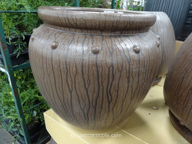 Mullally Rainforest Ceramic Planter Costco 3
