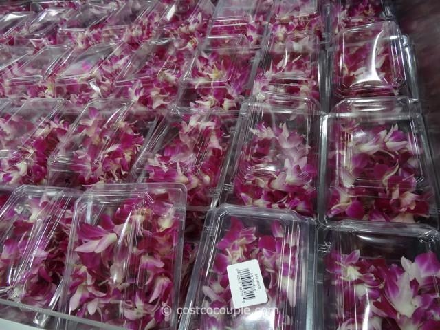 Orchid Lei Costco 2