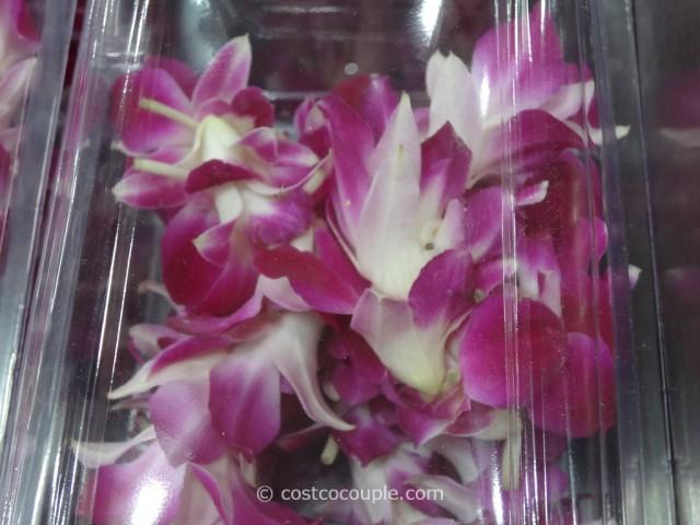 Orchid Lei Costco 3