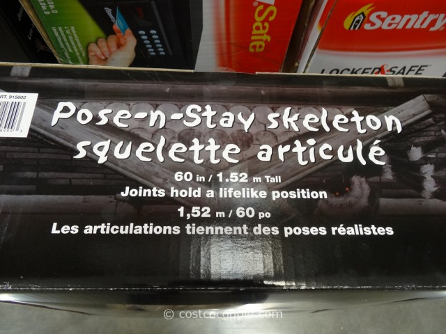 60-Inch Pose-N-Stay Skeleton Costco 2