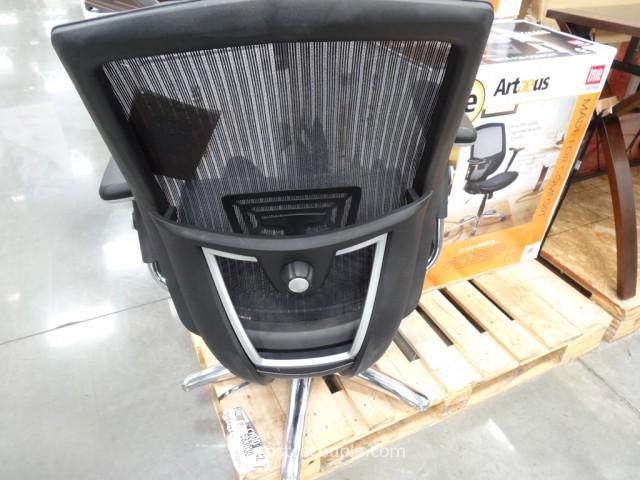 True Innovations Artaeus Ergonomic Mesh Work Chair Costco 5