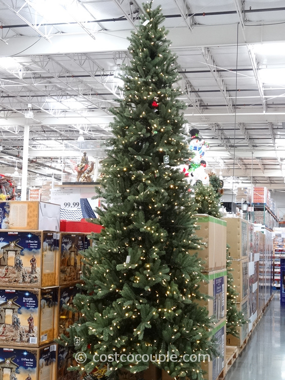 12 ft pre lit christmas tree costco part 15 ez connect 12ft prelit led - 12 Foot Christmas Tree