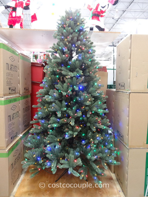 EZ Connect 75Ft Prelit LED Christmas Tree Costco 6