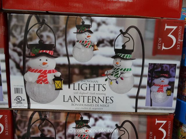 Low Voltage Christmas Lights