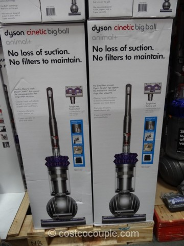 Dyson Cinetic Big Ball Animal Plus Costco 4