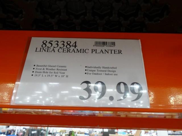 Linea Ceramic Planter Costco 1