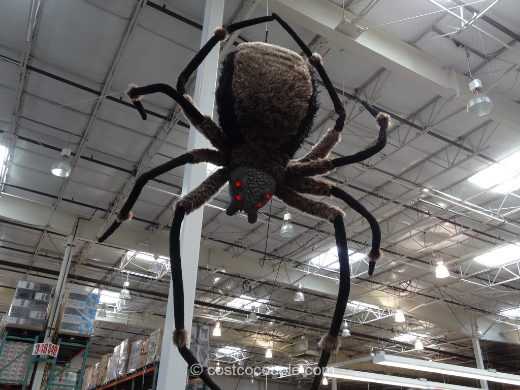 giant spider with led eyes