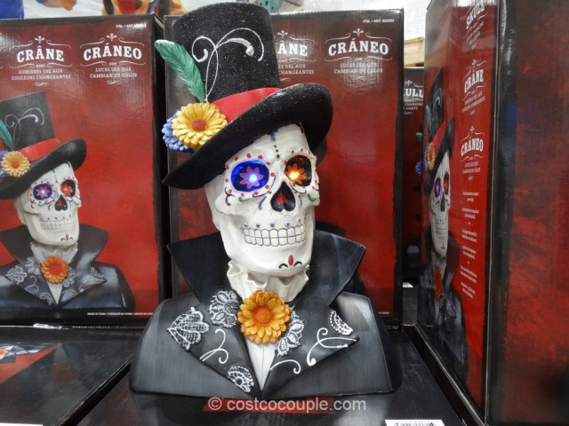 Skull With Color Changing LED Lights Costco 2