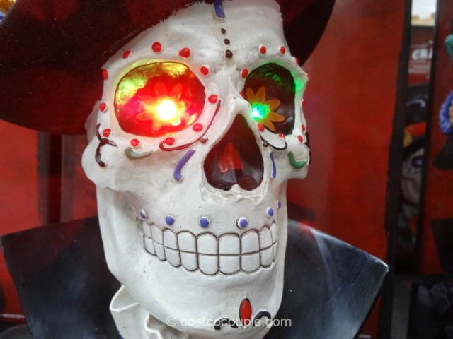 Skull With Color Changing LED Lights Costco 5