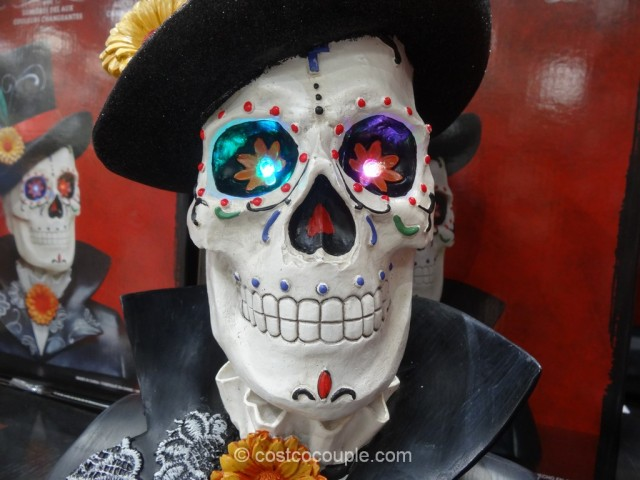 Skull With Color Changing LED Lights Costco 6