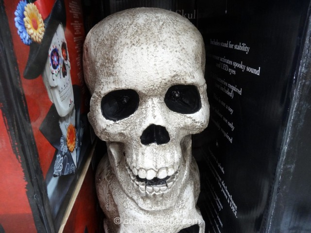 Stacked Skulls Costco 3
