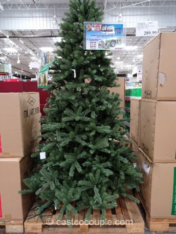 EZ Connect 75Ft Pre-lit LED Christmas Tree Costco 2