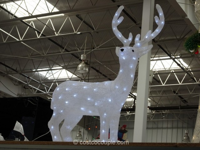 40-Inch LED Deer Costco 2