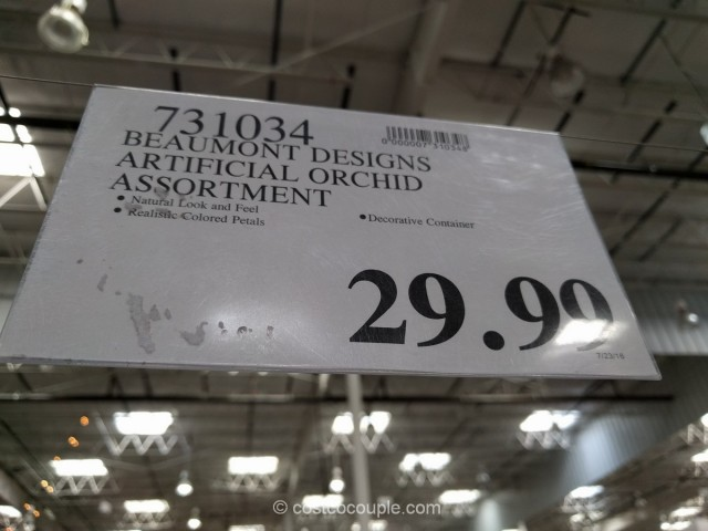 Beaumont Designs Artificial Orchid Costco 1
