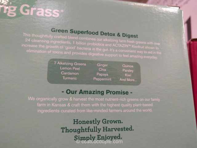 amazing-gass-green-superfood-detox-and-digest-costco-6