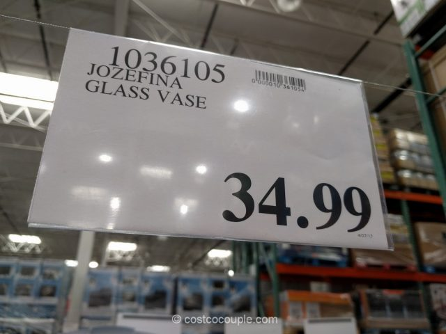 Josefina Handblown Vase Costco