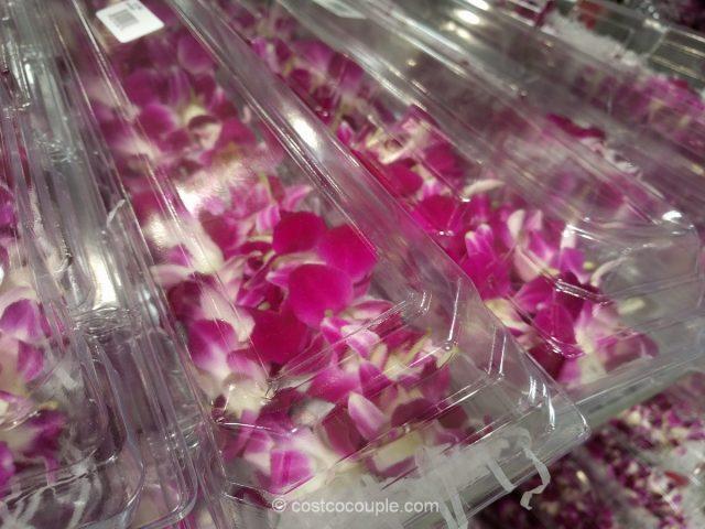 Orchid Lei Costco