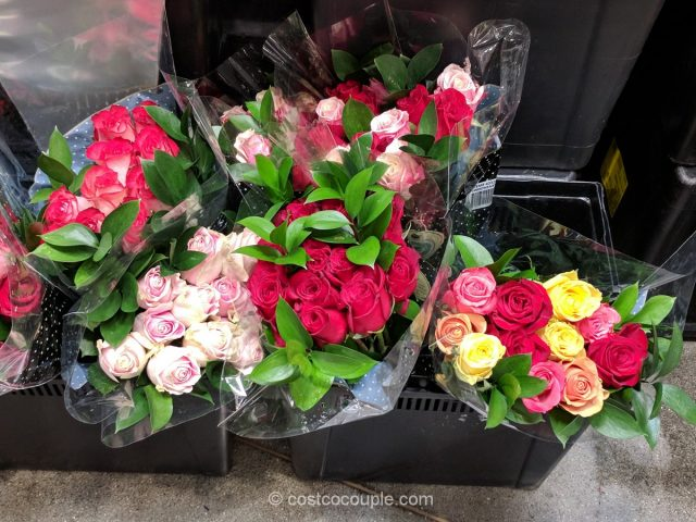 One Dozen Premium Valentine's Day Roses Costco