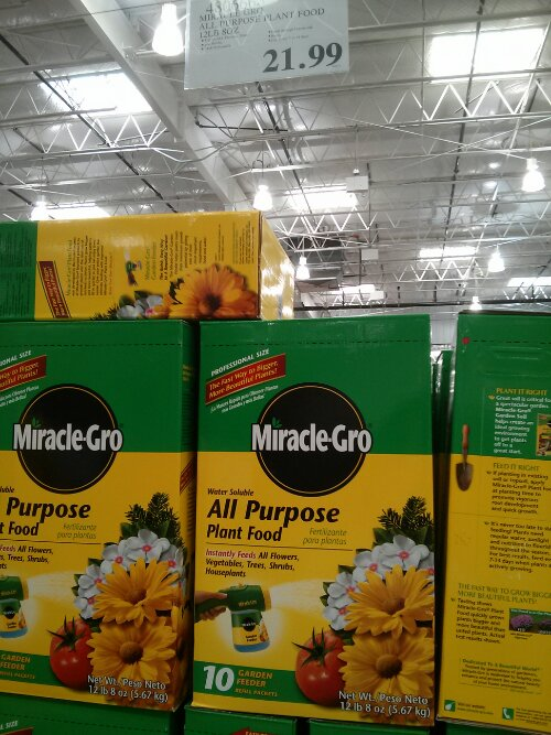 Miracle Gro All Purpose Plant Food at Costco