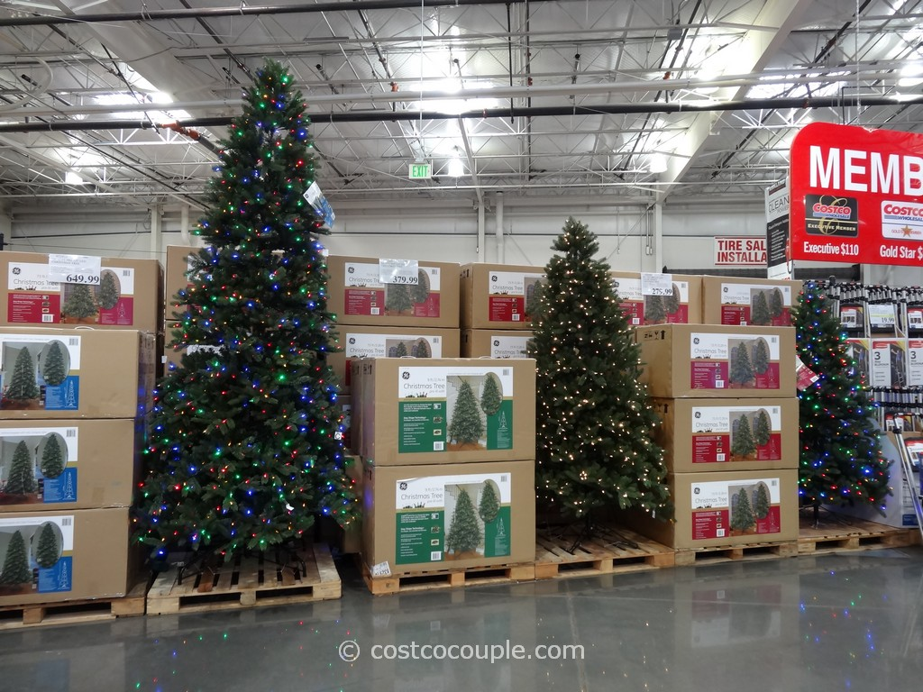 Ge 12 Feet Prelit Led Christmas Tree Costco 3